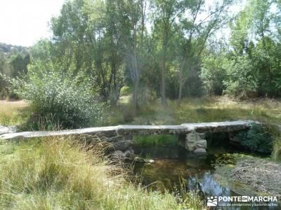Cañones del Río Cega y  Santa Águeda  – Pedraza;foros de montaña ruta charca verde